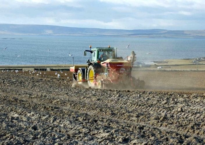 Bere Barley planted early on Orkney