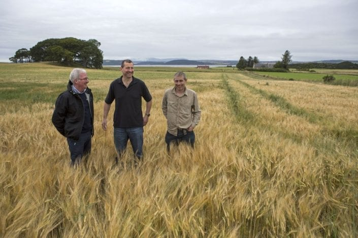 Mark Kinsman, William Rose and Duncan Hepburn in organic barley